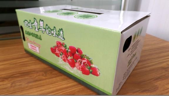 主营:             设计定做草莓水果包装纸盒休闲食品图片