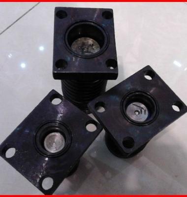 液压剪板机压料缸图片/液压剪板机压料缸样板图 (2)