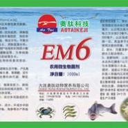 EM6图片