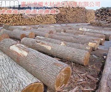 张家港木材进口清关代理图片