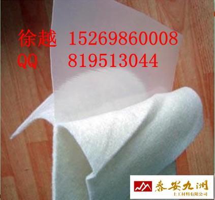 供应两布一膜丨型号400g两布一膜丨两布一膜价格丨东营两布一膜厂家