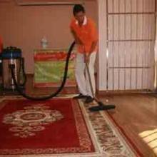 供应常熟地毯清洗-羊毛地毯-混纺-化纤图片