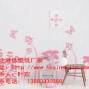 沧州壁纸漆全国诚招加盟代理图片