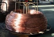 供应zxt-yx-12铜包钢接地圆线