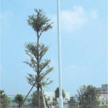 供应湛江球场灯杆灯柱,湛江球场照明灯【湛江哪里有球场灯杆卖】