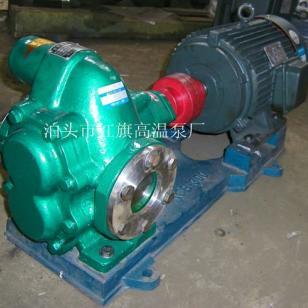 华潮2CG18-06齿轮泵图片