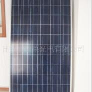 10W至300W单晶多晶太阳能电池板图片