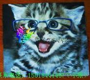 眼镜布数码印花印花加工热转印图片