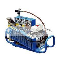 供应便携式充填泵