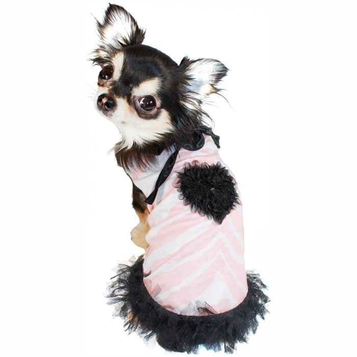宠物服装日单