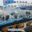 济南到杭州宠物托运图片