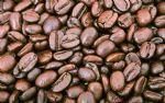 供应巴西爱尔兰咖啡豆进口上海报关批发