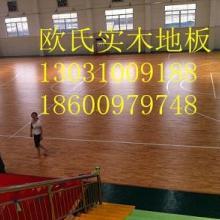 供应青海省运动木地板,欧氏运动木地板厂家价格,运动场馆专用材料