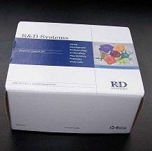 供应兔子白介素6(IL-6)ELISA试剂盒批发