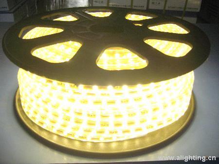 供应留虹照明led5050贴片灯带30珠图片