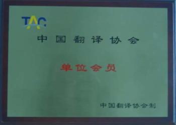 市场分析报告翻译福州翻译图片