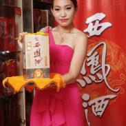 9年银藏西凤酒图片