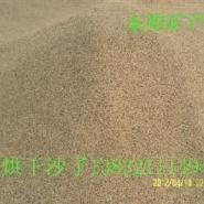 北京10-20目儿童娱乐黄沙子图片