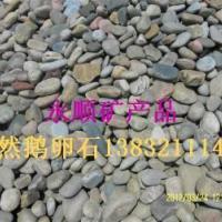 供应鹅卵石本厂常年供应1-3 3-5cm低价鹅卵石 河卵石