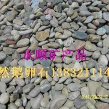 供应石家庄红色鹅卵石,石家庄鹅卵石厂家直销,鹅卵石用途价格图片