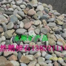 供应沧州鹅卵石