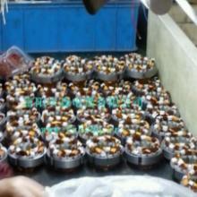 供应自吸泵电机定子/转子/线圈 加工