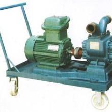 供应优质电动泵
