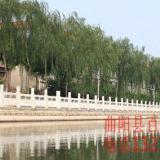 供应制作安装大理石栏杆大理石护栏