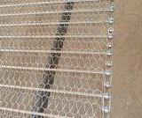 供应食品机械网链食品输送机械网链厂销售 不锈钢食品输送网链
