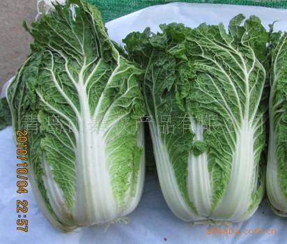 青岛新鲜蔬菜图片/青岛新鲜蔬菜样板图 (4)