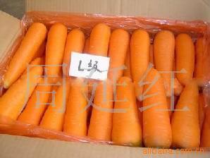 青岛新鲜蔬菜图片/青岛新鲜蔬菜样板图 (2)