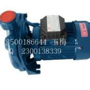 CM-100冷水机泵图片