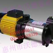 凌霄STP50海水泵多少钱图片