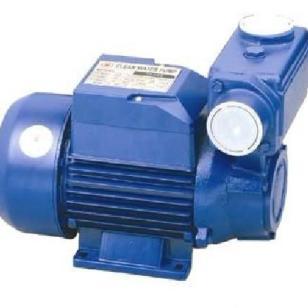 TPS系列小型自吸泵图片