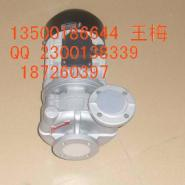 广东元欣高温循环泵图片