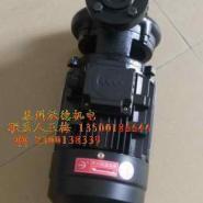 正品木川牌TS系列模温机专用泵图片