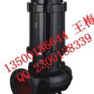 耐高温自动搅匀潜水泵图片