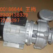 广东元新YS-35A热油循环泵图片