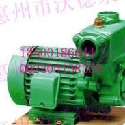 威乐牌PW-1500E自吸泵图片