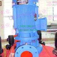 立式单级离心泵图片