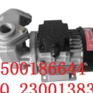 福建木川TS-63模温机泵批发图片