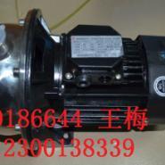 CP-158不锈钢清水泵厂家图片