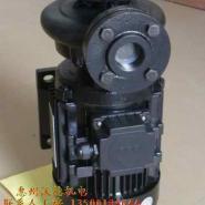 木川高温油泵泵浦图片