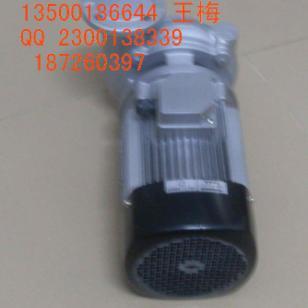 YS-36C-180高温水泵图片