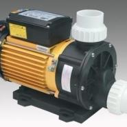 TDA系列海水泵游泳泵图片