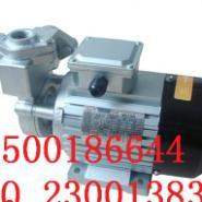 木川TS-63高温水泵图片