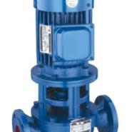 ISG/IRG型立式离心泵图片