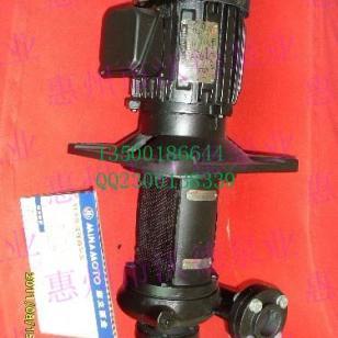 源立品牌YLX系列循环泵图片