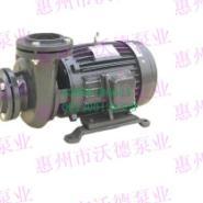 源立YLGW65-20玻璃机械泵图片