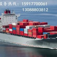 供应东莞深圳到利比里亚国际海运货运